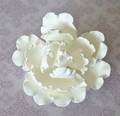 Single Large Closed Peony- White- 120mm- Box of 9 - SOLD OUT