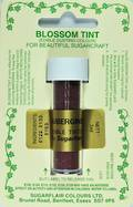 Sugarflair Edible Dusting Colour Aubergine - SOLD OUT