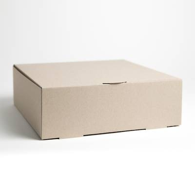 "Cake Boxes, 17"" x 14"" x 4""  1/4 Slab Block Cake (10)"