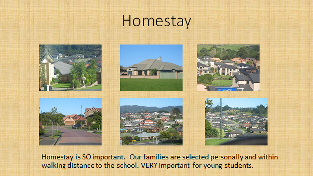 Home stay graphic