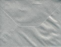 C5D020 - Silver