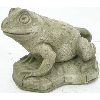 Toad - Large
