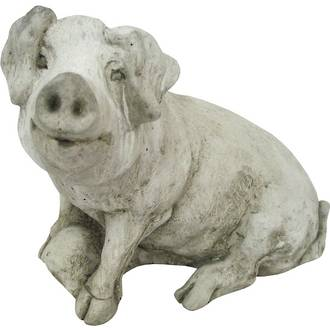 Pig with Parsnip