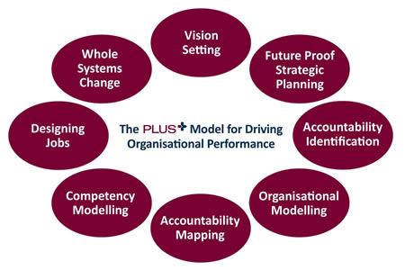 Plus model & remuneration strategy
