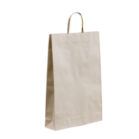 Large Kraft Paper Bags 500x450+120 Twisted handle x 250