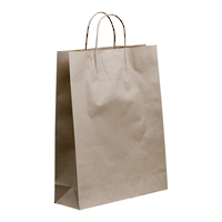 Kraft Paper Medium Boutique 480 x 340 + 110 with handle x 250
