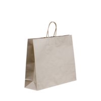 Kraft Paper Midi Bags 420 x 320 + 110 Twisted Handle x 250