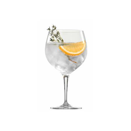 BBQ Drinks Gin & Tonic Glass - Set 6
