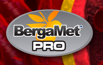 BergaMetPro