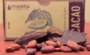 Organic Cacao Paste / Cocoa Paste - Ceremonial