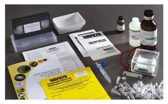 DNA Fingerprinting Electrophoresis Lab System