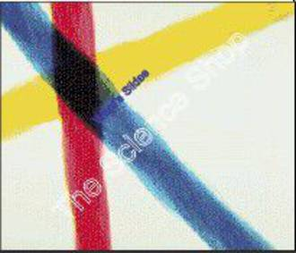 Crossed Coloured Threads (wm) Teach student to focus the microscope