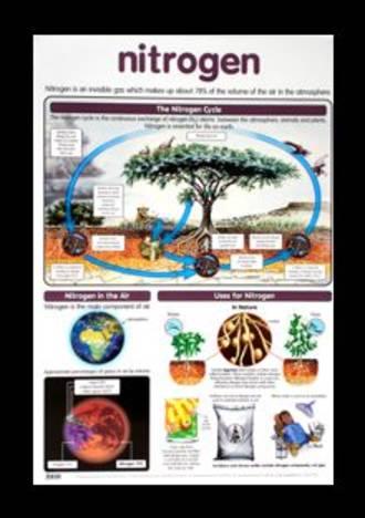 Nitrogen - Poster