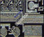 Computer Chip (wm) Shows the complexities of a computer chip