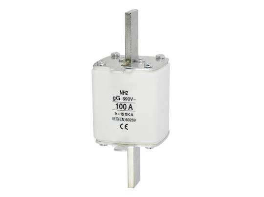 Fuse Link DIN Type Size 2 (NH2)