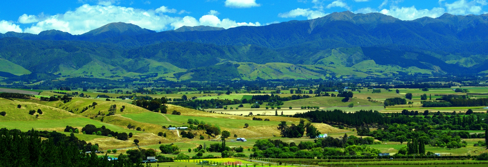 Twilight Travel & Tours. Wairarapa Coach Tour