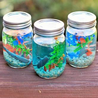 Make your own jam jar aquarium