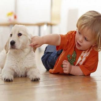 Kids pet allergies