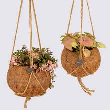 Kokodama 15cm & 17cm Hanging Nine Plant Package