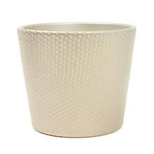 Lina 15cm Champagne Metallic Ceramic Pot