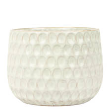 Emma 15cm Dimple Gloss Ceramic Pot