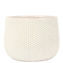 Emma 15cm Dot Gloss Ceramic Pot