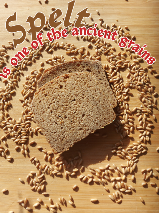 Spelt ( Dinkel or Farro) Wholemeal Sourdough Bread 850g