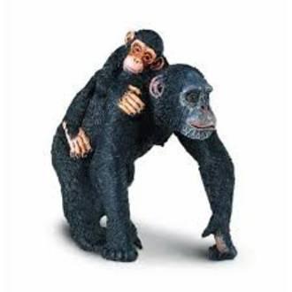 Safari - Chimpanzee with Baby