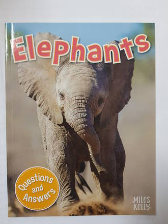 Miles Kelly My First Q & A Elephants