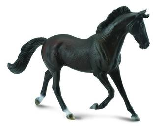 Collecta - Thoroughbred Mare Black