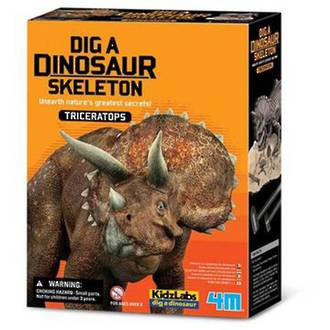 Excavation Kits, Triceratops Skeleton