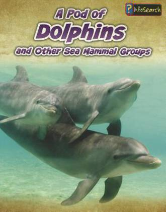 A pod of dolphins and other sea mammal groups by Richard Spilsbury