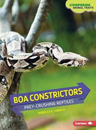 Boa constrictors by Rebecca E. Hirsch