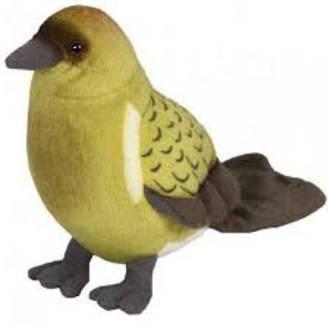 Sound Bird Bellbird (Korimako)