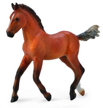 CollectA Hanoverian Foal