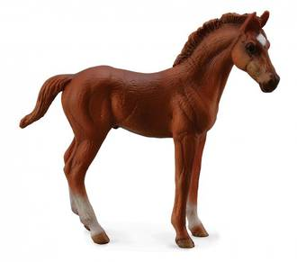 CollectA Thoroughbred Foal (Standing/Chestnut)