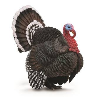 CollectA Turkey