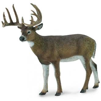 CollectA White Tailed Deer