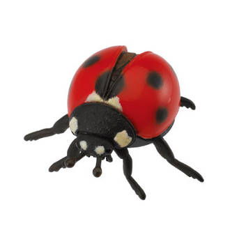 Collecta - Ladybird