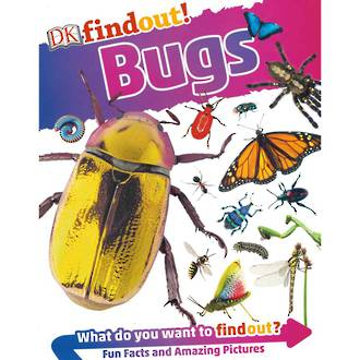 DK Findout Bugs