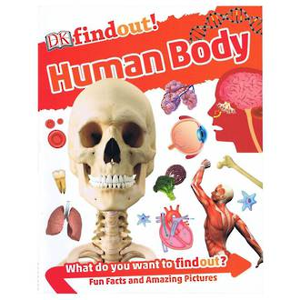DK Findout Human Body
