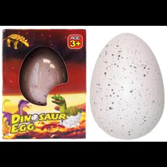 Hatching Dinosaur Egg - Large