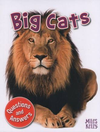 Miles kelly - My First Q & A Big Cats