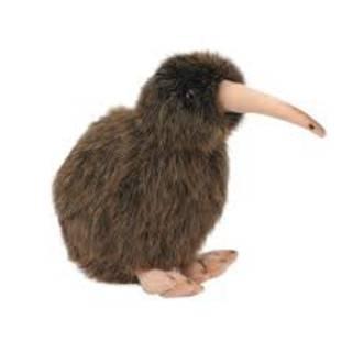 Sound Bird Kiwi