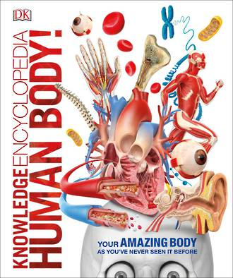 DK Knowledge Encyclopedia Human Body