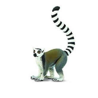 Safari - Ring Tailed Lemur