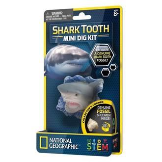 Shark Tooth Mini Dig Kit