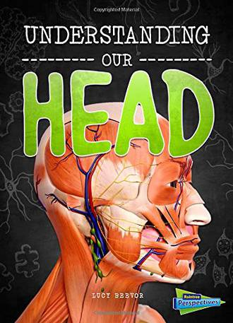 Understanding Our Head