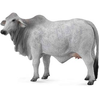 Collecta - Brahman Cow