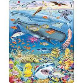 Larsen Tray Puzzle - Pacific Ocean 66 pieces